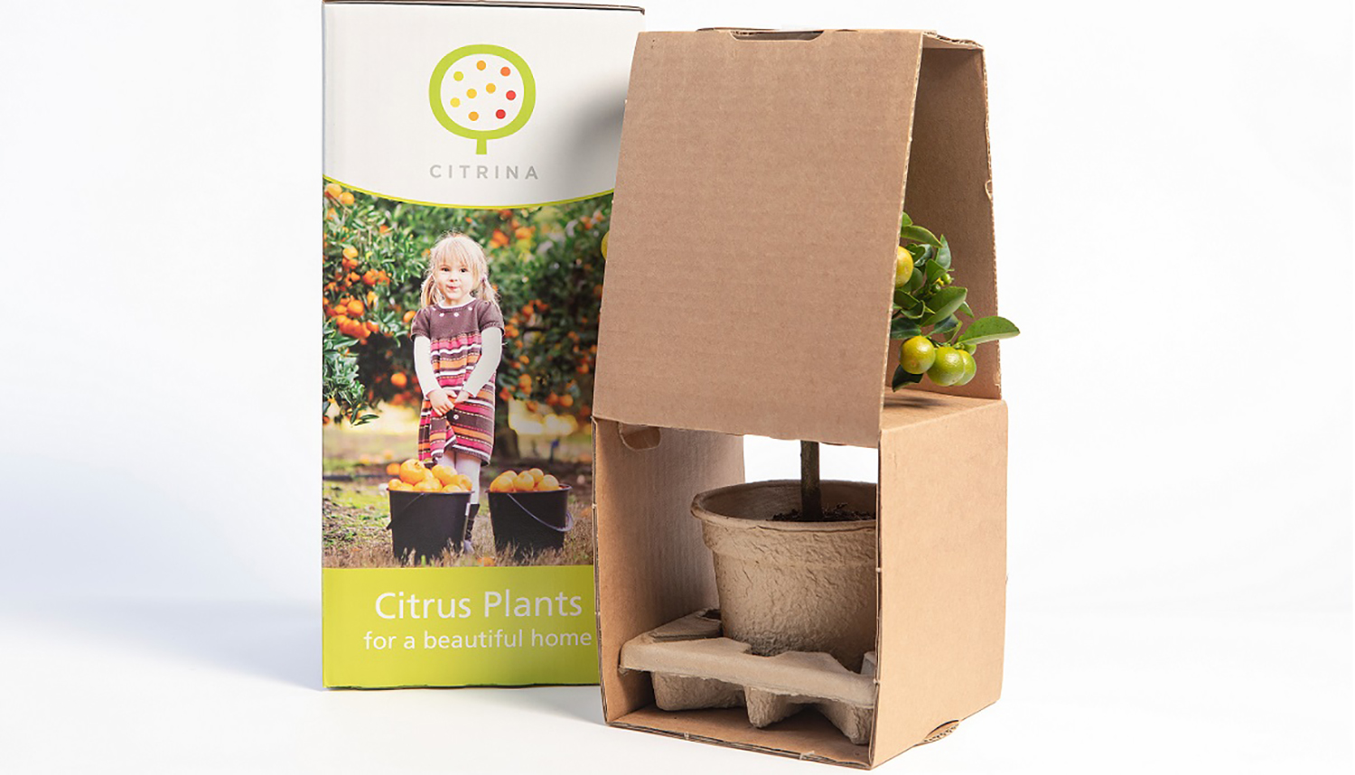 Mail Order Packaging CTA Image