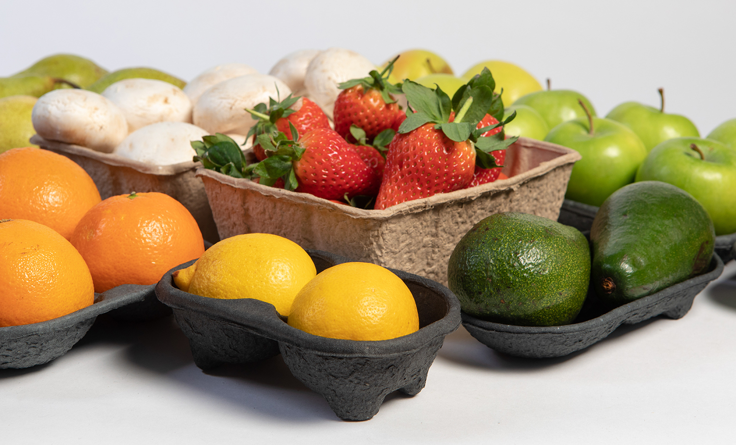 Produce Tray Brochure Image